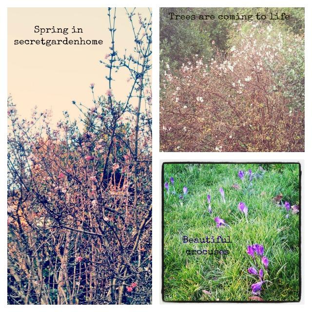 Spring in secretgardenhome
