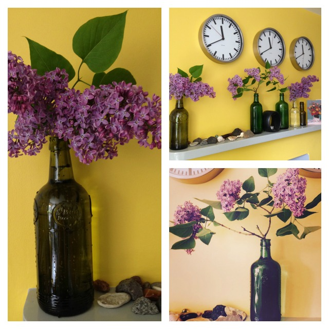Lilacs, lilacs display, bez, purple lilac, flowers, home flowers, secretgardenhome