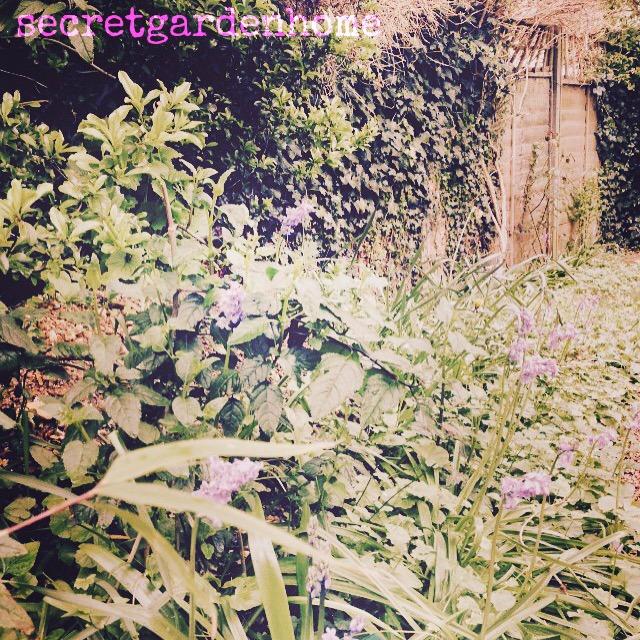 secretgardenhome garden, secret garden