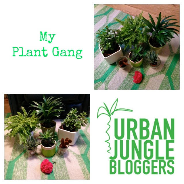Urban Jungle Bloggers, Plant gang, secretgardenhome